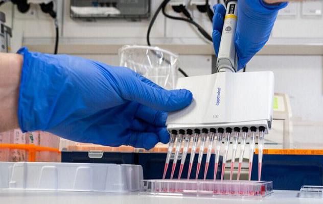 علماء يطورون تقنية اختبار سريع لڤيروس كورونا
